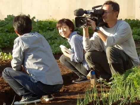Tanikawa Hao san